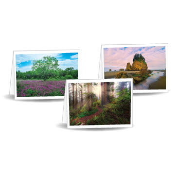 12-pack All-Purpose Scenic Greeting Cards